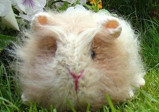 Knitting Pattern For A Guinea Pig : Ravelry: Gertie Guinea Pig pattern by Debi Birkin
