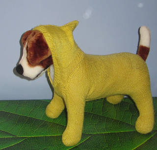 Knitting Patterns For Dog Hoodies : Ravelry: Jack Russell Dog Hoodie Hoody pattern by Christine Grant