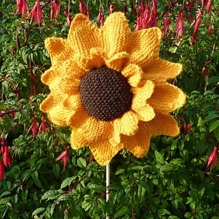Sunflower Cushion Knitting Pattern : Ravelry: Sunflower Pincushion pattern by Elizabeth Lovick